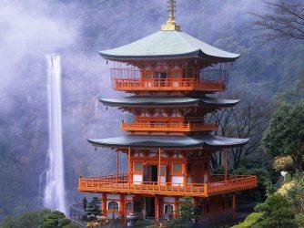Wierzchołki i korzonki. Zapach japońskiej świątyni